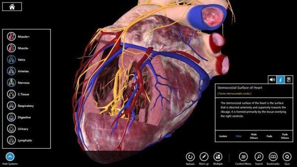 Essential Anatomy 3 3.3.2.0 Crack + Serial Key Updated (Mac) Free Download